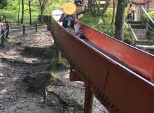 楽しかった生駒山麓公園!