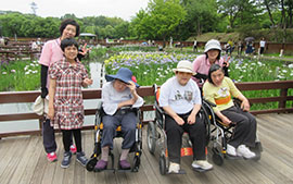 【ぽらりすデイ】山田池菖蒲園へ行って来ました!